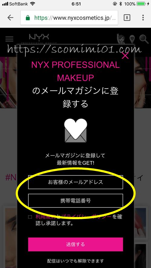 nyx会員登録ウィンドウ