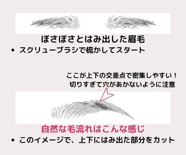 ボサボサ眉と形の整った眉のイラスト