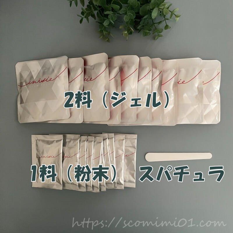エニシーグローパック1箱の内容.1料2料ともに10袋、専用スパチュラ